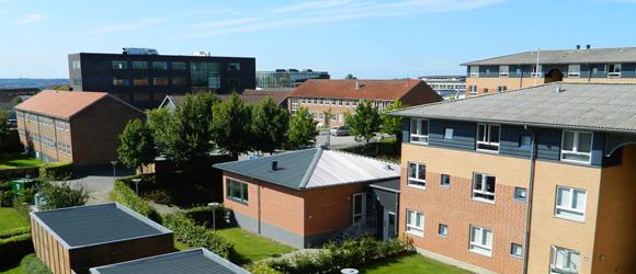 Dania Kollegiet View